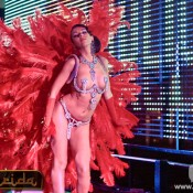 Bdance Gogo Dluxe Feathers