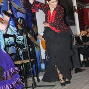 Flamenco shows para eventos