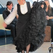 Shows flamenco para empresas
