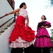 Zancudos Flamencas