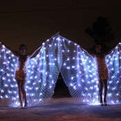 Echassiers papillons leds