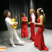 Ensayo grupo flamenco