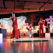 Espectaculos flamenco para cenas