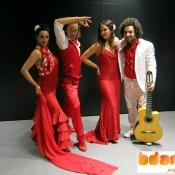 Bdance cena shows Flamenco