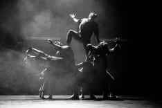 espectáculo danza fusión