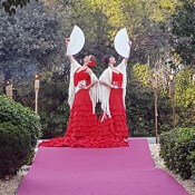 Bdance danseuses Flamenco