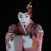 Geisha para eventos
