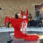 Espectáculos Flamenco para cenas empresa