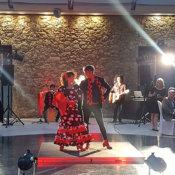 Espectáculos flamenco para eventos
